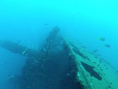 The wreck and its' forward mast - and a few Dory