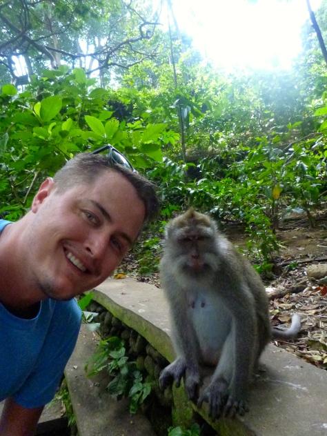 Monkey #selfie